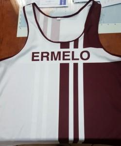 Ermelo2