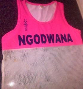 Ngodwana1