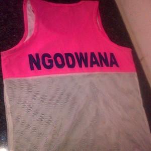 Ngodwana2