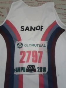 SANDF 2
